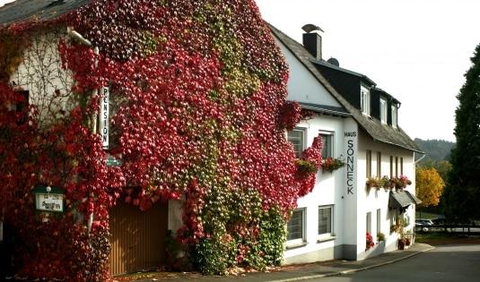 Hotel Pension Haus Sonneck Manderscheid eifel