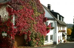 Hotel-Pension Haus Sonneck